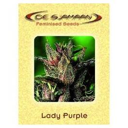Lady Purple (5ks)