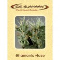Shamanic Haze (5ks)