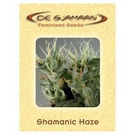 Shamanic Haze (5ks)