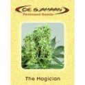 The Magician (5ks)